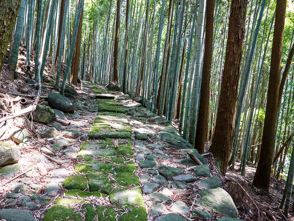 竹林の中の石坂石畳道